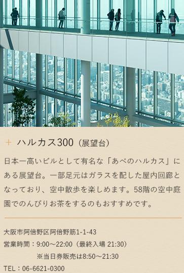ハルカス300(展望台)