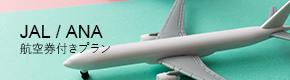 JAL / ANA 航空券付きプラン
