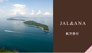 JAL/ANA 航空券付