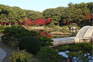 名勝 縮景園(広島県立美術館 隣接)